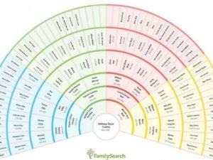 Family History Fan Chart