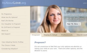 New Pregnancy Counseling & Adoption Services Web Site