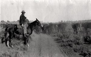 homestead-act-1862-pioneers