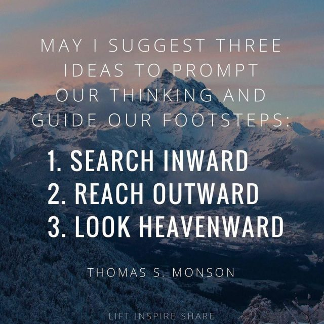 monson-search-reach-look